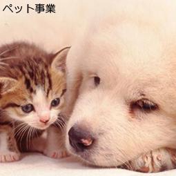 ペット事業